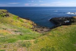 Philip Island 10