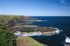 Philip Island 11