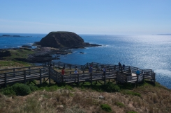 Philip Island 2