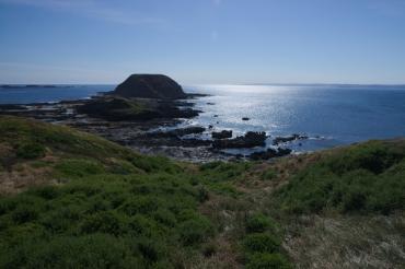 Philip Island 4
