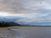Port of Cairns 5