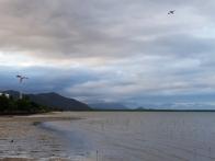 Port of Cairns 5