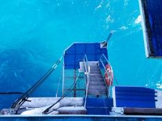 Reef Encounter diving platform